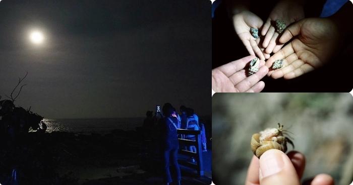 台東》夜訪小野柳,幫寄居蟹換殼,賞太平洋,住海邊度假小別墅! @捲捲頭 ♡ 品味生活