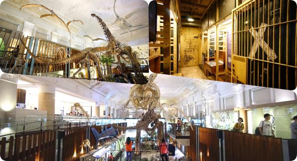 ▋台北景點 ▋土銀展示館。恐龍迷必到!銅板價逛神秘金庫、巨大的恐龍化石搭配上美麗的歐式建築超酷! @捲捲頭 Wonderful 品味。生活