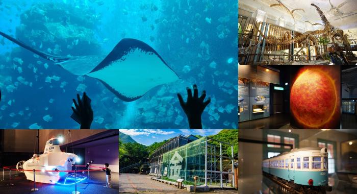 七間必逛博物館⎪考古尋寶、山城淘金體驗、跟鯊魚比賽跑、跟企鵝一起喝咖啡、鐵道迷必訪。特色博物館一次搞定! @捲捲頭 Wonderful 品味。生活
