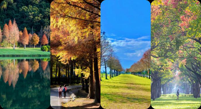 """▋宜蘭中興文創園區 ▋貼近生活的 """"紙,木與布"""" 的手作園地。小而美,超好逛的創意風格市集。 @捲捲頭 Wonderful 品味。生活"""