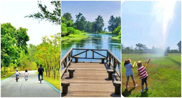台東景點》台東森林公園。漫步黑森林,夢幻琵琶湖超忘憂,還能蹭水玩一下! @捲捲頭 ♡ 品味生活