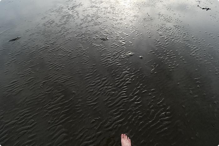台中》高美濕地。來趟美美的濕地步道之旅吧!到這裡賞日落吹吹風,美拍木棧道無敵大風車~ @捲捲頭 ♡ 品味生活