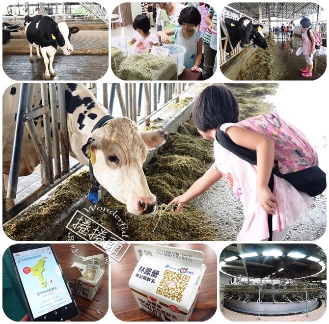 ▋台南景點 ▋林鳳營透明牧場。自己調配飼料,親手餵牛,還有參觀牛牛的旋轉木馬! @捲捲頭 Wonderful 品味。生活