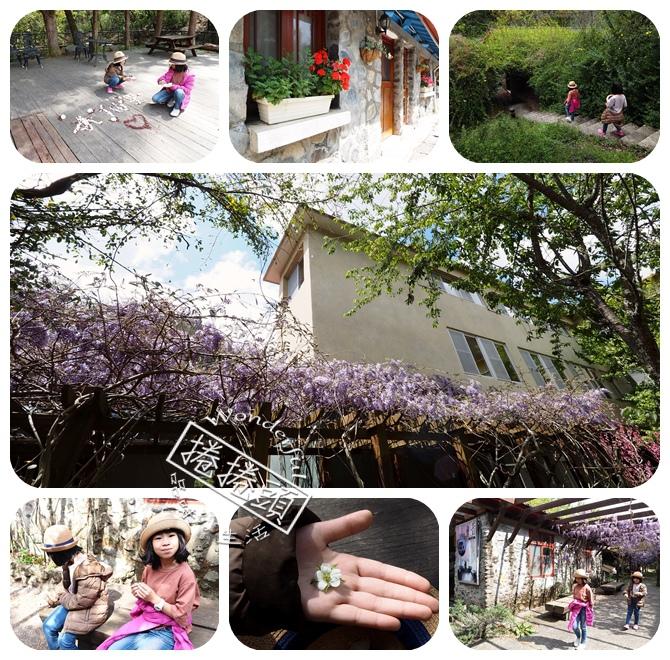 ▋武陵賞花熱點▋武陵農場的紫藤花秘境。把握最後一波花期,可能還會看見小猴子喔~ @捲捲頭 Wonderful 品味。生活