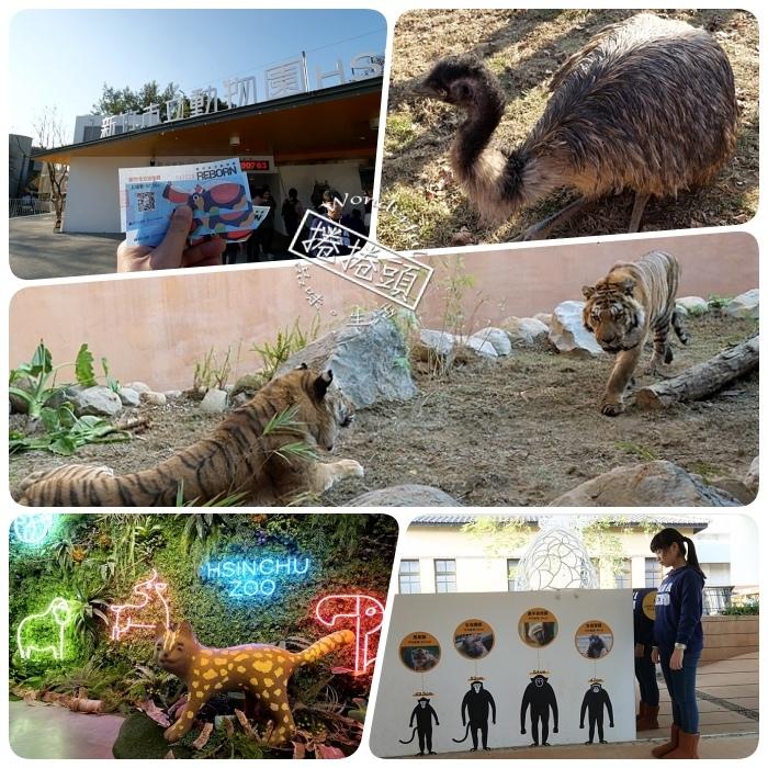 ▋新竹市立動物園 ▋快來動物點點名!有大明星河馬樂樂、北美浣熊、馬來熊。動物園新裝登場! @捲捲頭 Wonderful 品味。生活
