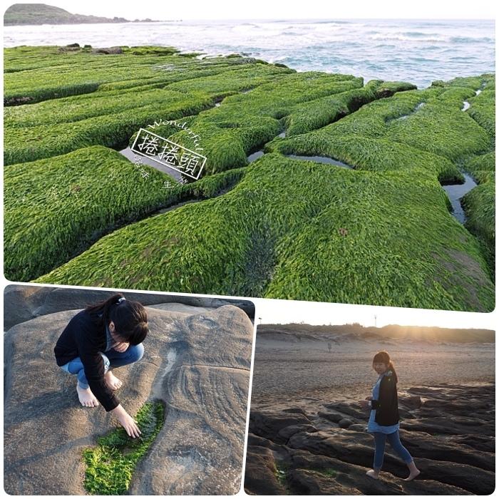 ▋新北市石門景點 ▋2020老梅石槽。季節限定的抺茶地毯!大自然的奇蹟,火山礁岩舖上綠色大地毯,北海岸獨有的景緻! @捲捲頭 Wonderful 品味。生活