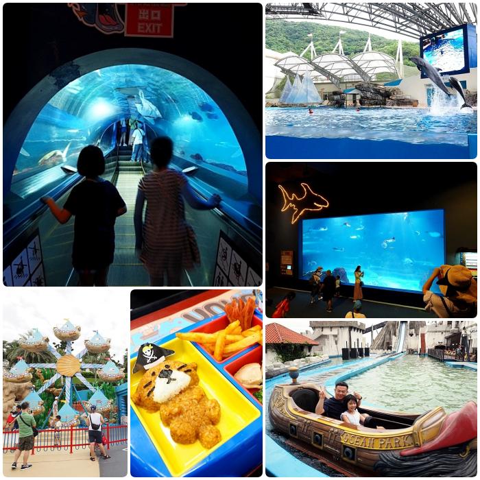 ▋花蓮景點 ▋遠雄海洋公園。坐纜車玩碰碰船看海豚海獅表演秀,一票到底,還能近距離慢慢欣賞各種奇妙的海洋生物。 @捲捲頭 Wonderful 品味。生活